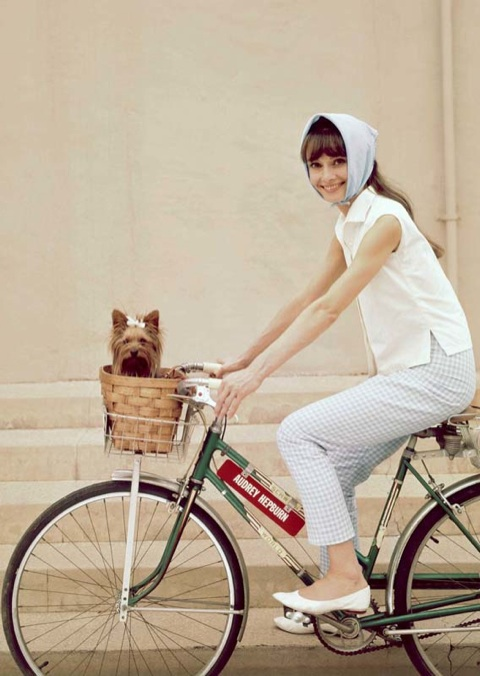audrey-bike